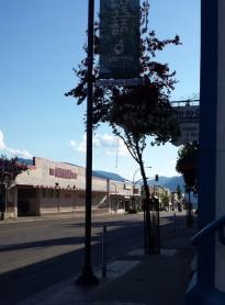 Creston, BC. Pretty country, sleepy town.